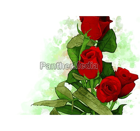bouquet of red roses water color