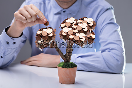 businessman placing coins on potted plant