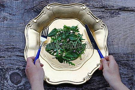 ein salat aus frischem loewenzahn sauerampfer