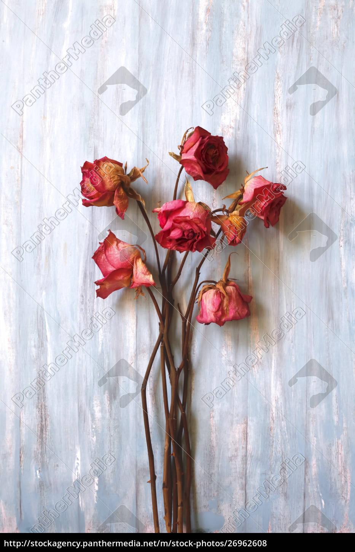 stillleben, getrocknete, rosen, auf, holz - 26962608
