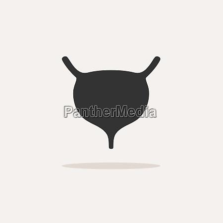 menschliches organ blasensymbol mit schatten auf