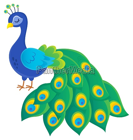 stylized peacock topic image 2