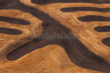 farmland landscape with ploughed fields and