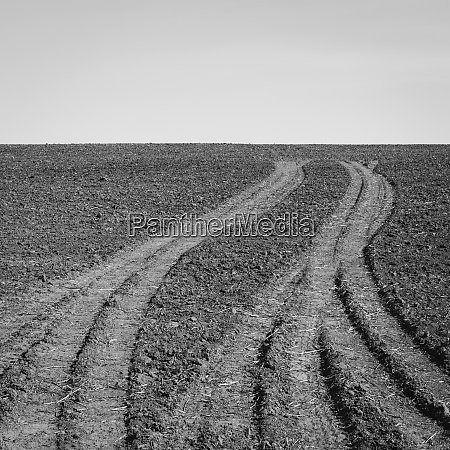 fresh tire tracks on farmland near