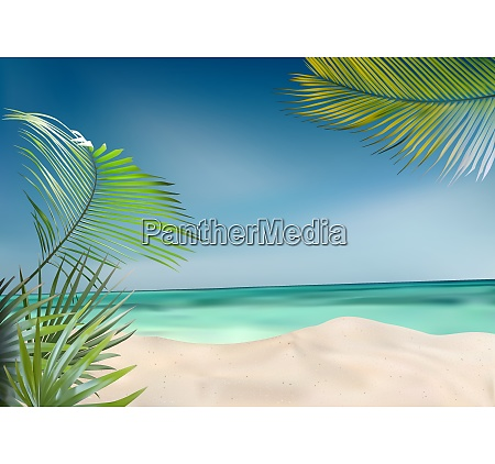 summer beach with palms and sea