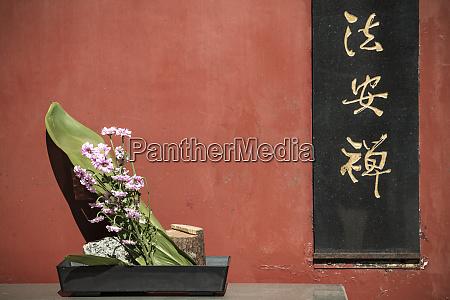 flower offering at the goddess of