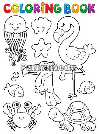 coloring book summer animals theme set
