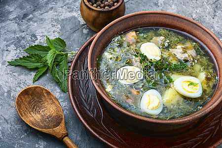 delicious green soup with sorrel
