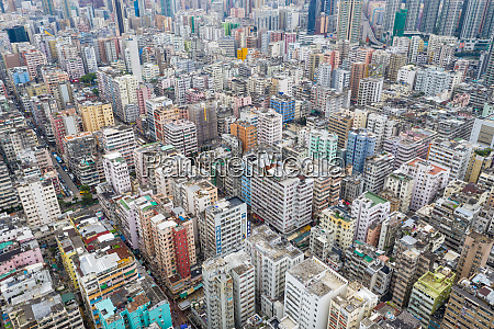 view kong hong city urban bird