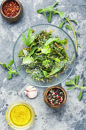 salad with parsley and portulaca