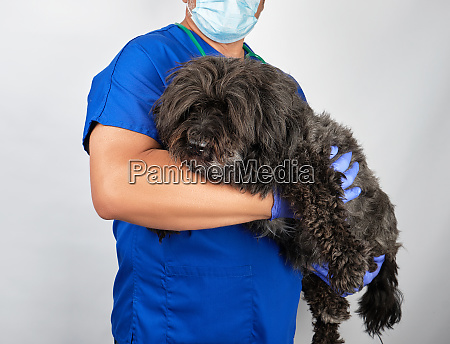 doctor in blue uniform and sterile