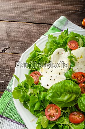 lammsalat mit mozzarella tomaten und basilikum