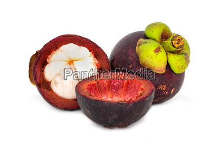 purple mangosteen fruit