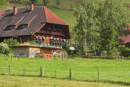 schwarzwald in deutschland