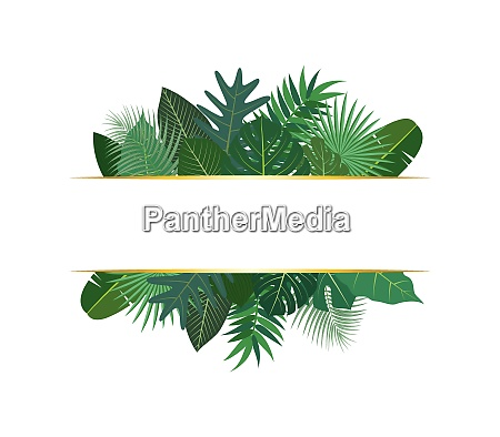 vector illustration of various exotic green