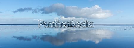 wolkenreflexion im wattenmeer