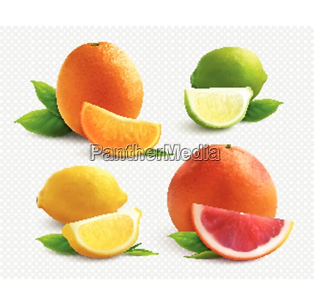 citrus fruits realistic set with lyme