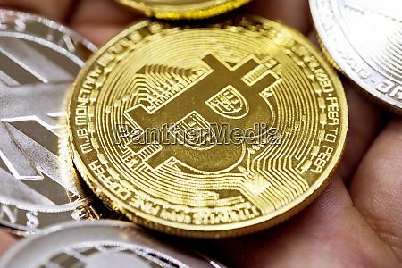 golden erd bitcoin in der hand