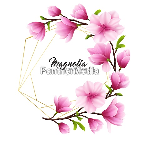 colored realistic magnolia flower illustration with