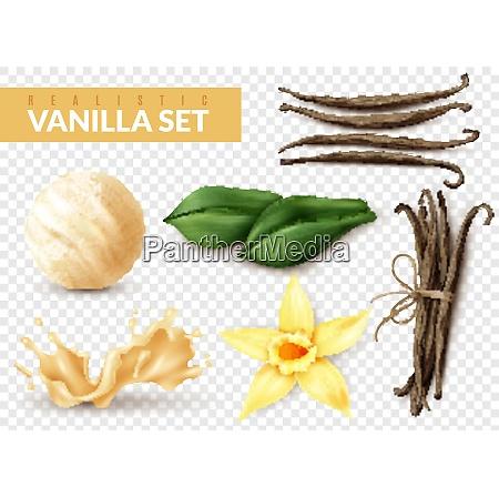 vanilla realistic set with ice cream