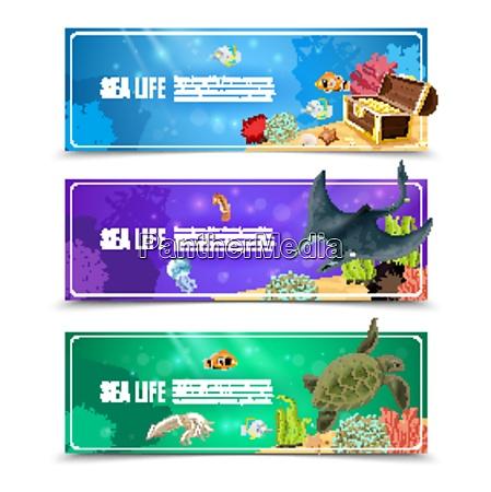 varianten der unterwasser meeresleben und meeresboden