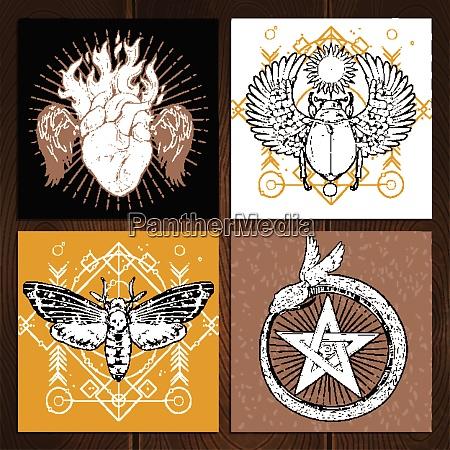 insekten okkulten tattoo skizze konzept okkulte