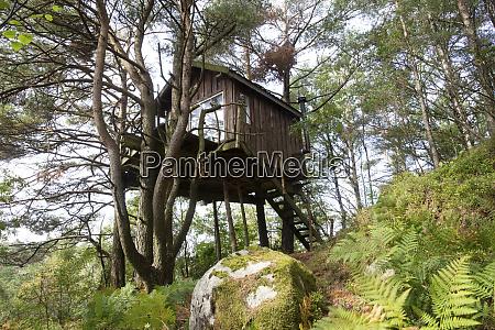 baumhaus in norwegen in einem gruenen