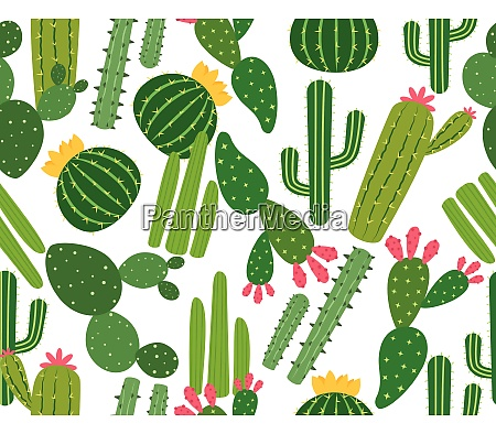 seamless pattern of many cactus isolated