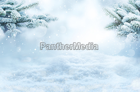 winter landscape with snowy fir branches