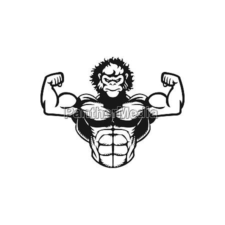 gorilla muskel maskottchen logo design