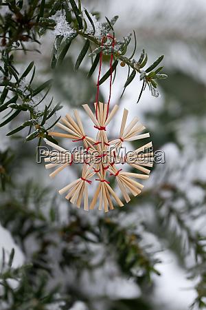 stroh stern weihnachtsschmuck im schnee