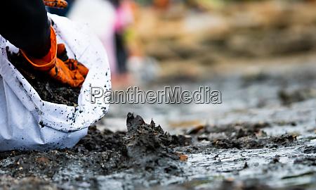 freiwillige sammeln muell verschmutzung der strandumwelt