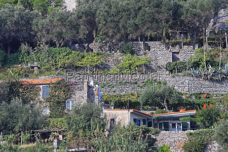 terrace gardens liguria