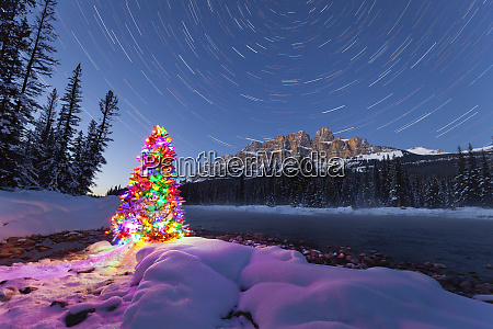christmas tree and star trails at
