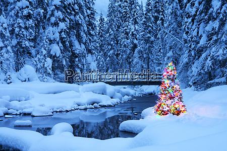 weihnachtsbaum neben einem bach smaragdsee yoho