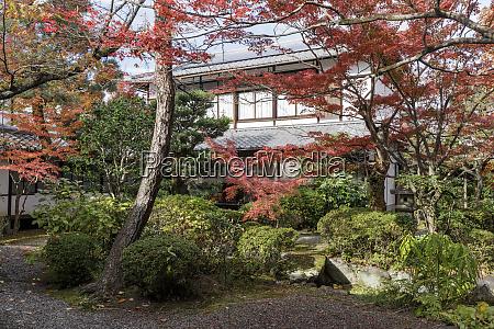 autumn color in rozanji temple in
