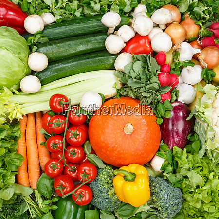 vegetables collection food background square tomatoes