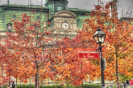 autumn colored trees hotel de ville