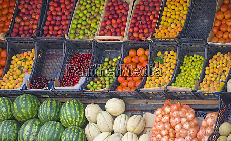 selling fruit and vegetables tirana albania