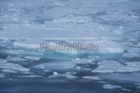 norway barents sea svalbard nordaustlandet ice