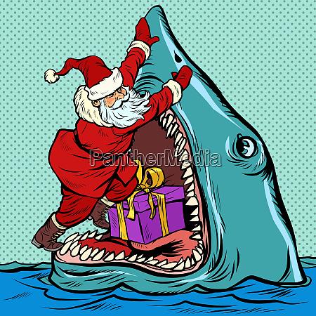 weihnachtsmann schiebt weihnachtsgeschenk in hai mund