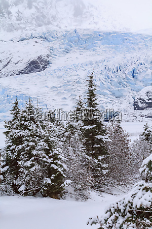 usa alaska mendenhall glacier emerges from