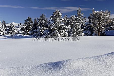 usa california sierra nevada range fresh