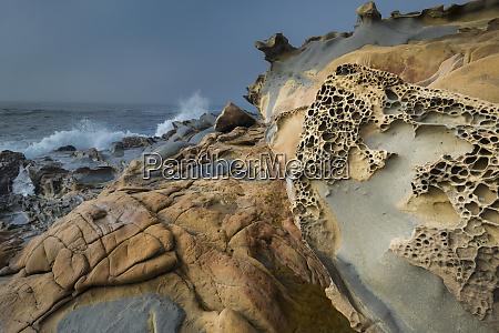 usa california shoreline landscape of tafoni