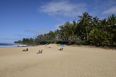 sonnenanbeter, im, ha'ena, state, park, ke'e, beach - 27340428