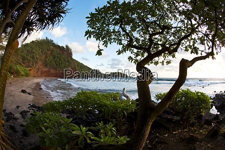 usa hawaii maui sunrise near hana