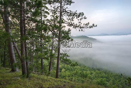 usa new york state mountains enshrouded