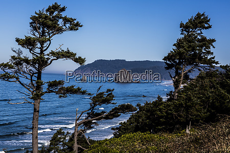 cannon beach oregon weathered pines haystack