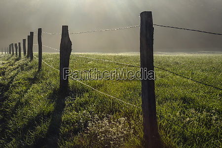fence in cades cove at sunrise
