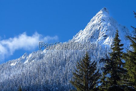 winterwaldlandschaft mit mcclellan butte cascade mountains